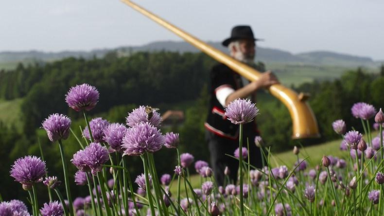 Alphorn mit Alpenblumen