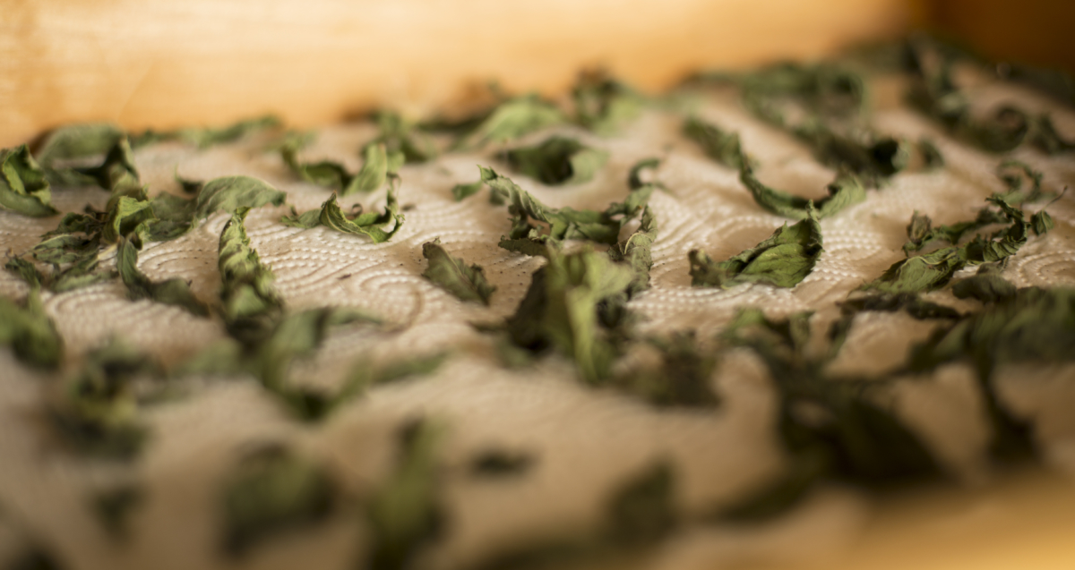 Dry mountain herbs