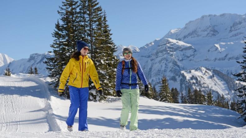 Winterwandern Lenk-Simmental