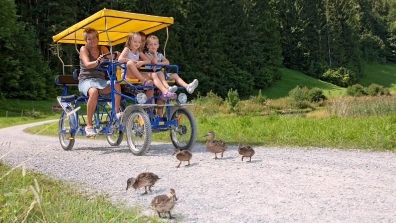 Lenk-Simmental Vierradvelo