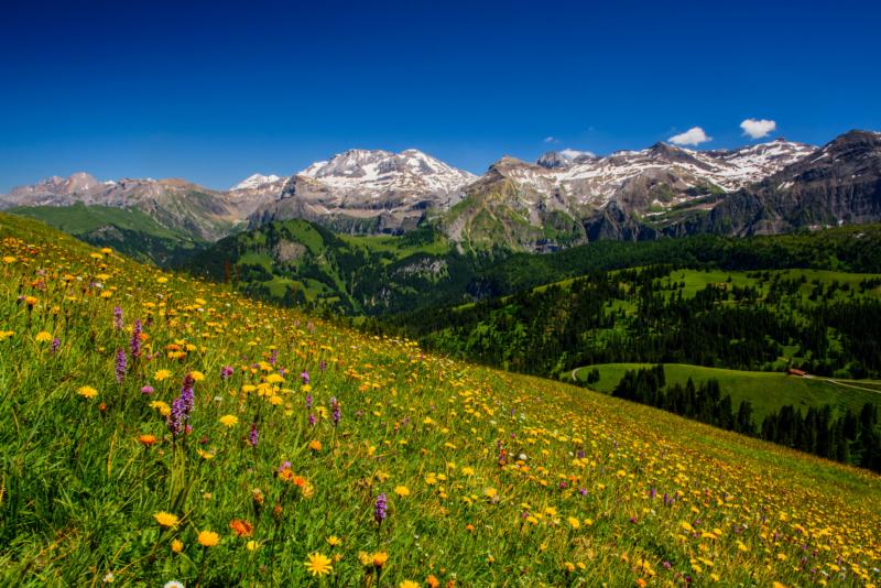 Der wohl schönste Talabschluss der Alpen