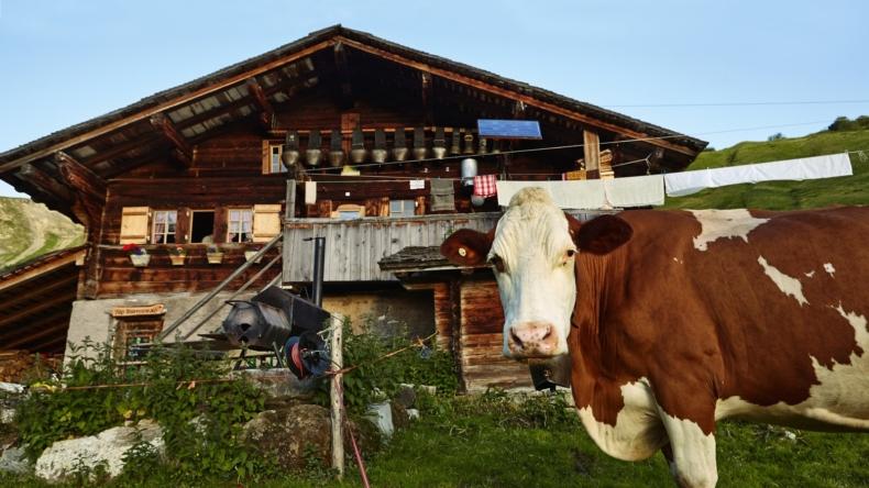 Alp Dürrenwald