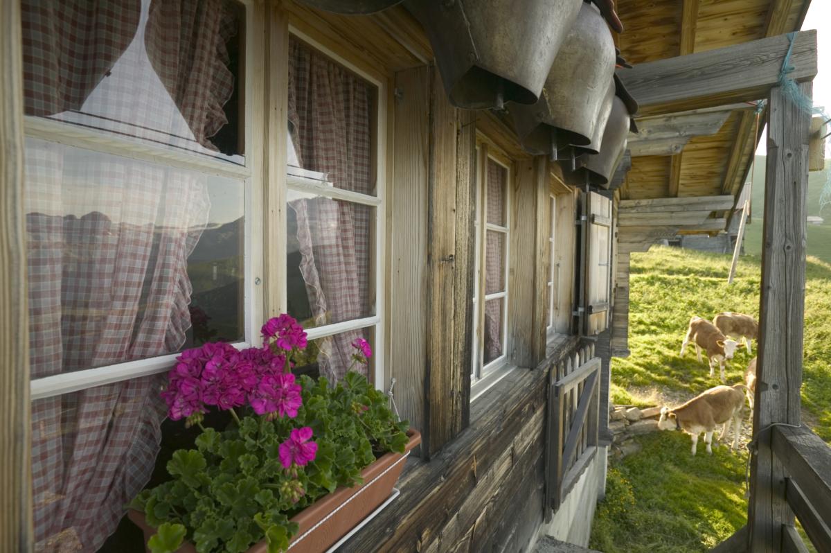 Alp Seewlen, Lenk im Simmental