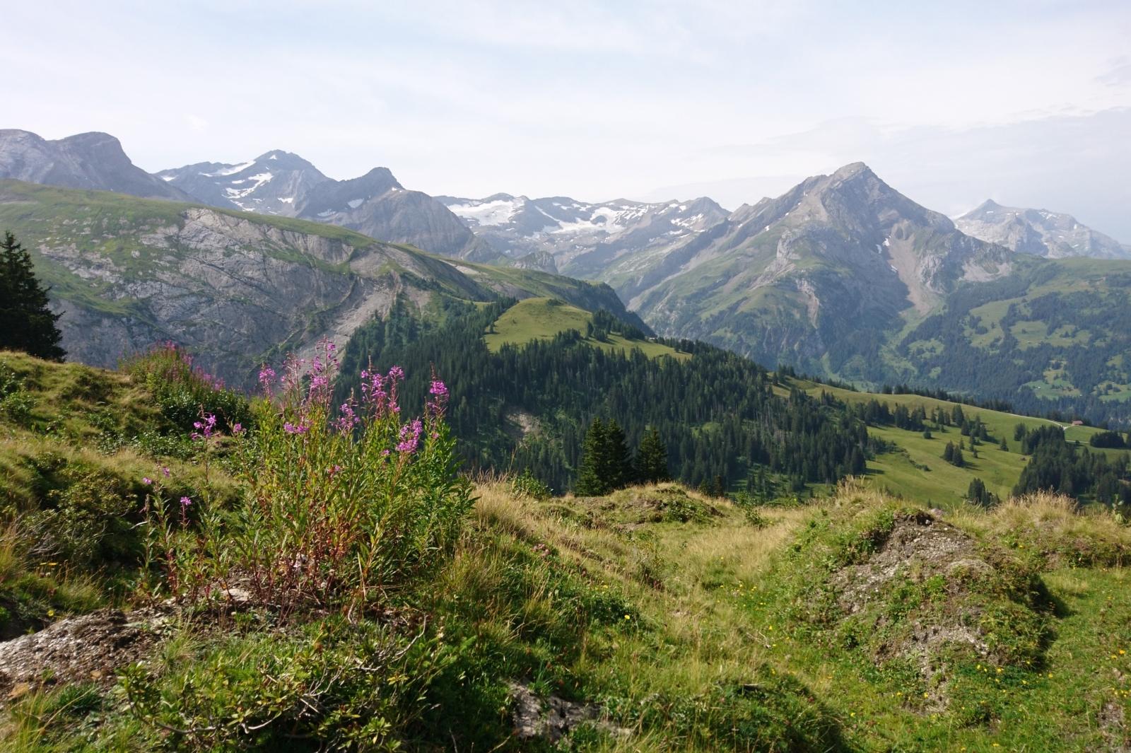 Salome Erlebnis Trütlisbergpass