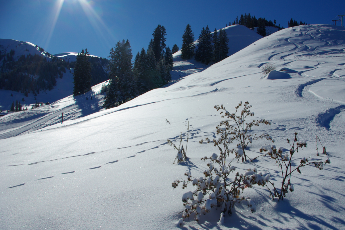 Oberwil im Winter