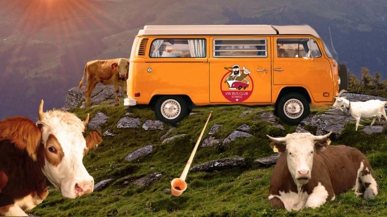 Int. VW Bus Treffen