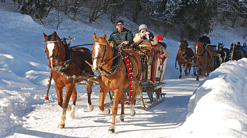 Lenk-Simmental Pferdekutsche im Winter