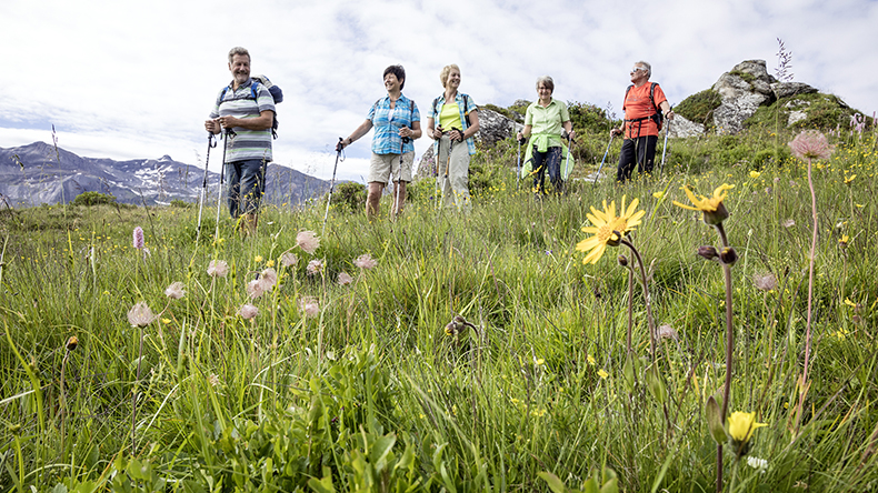 Alpenblumenweg_Leiterli